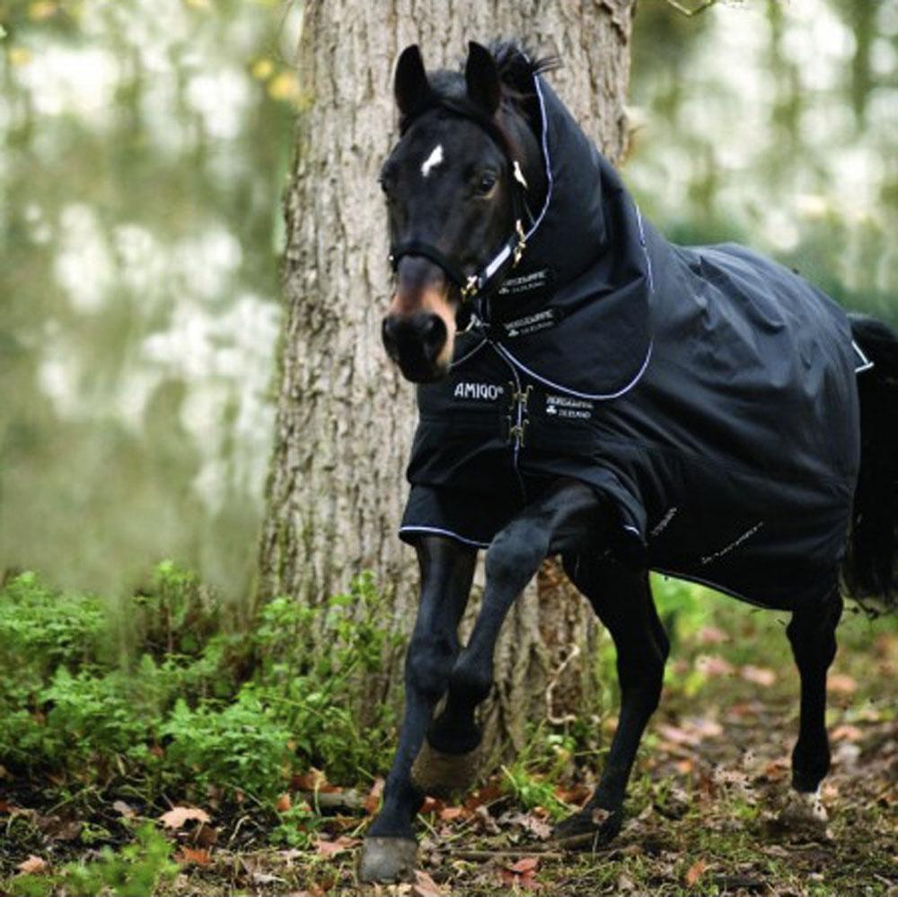 come scegliere le coperte per cavalli: consigli utili