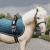 Sottosella Pony Velvet Tiny Collection KENTUCKY